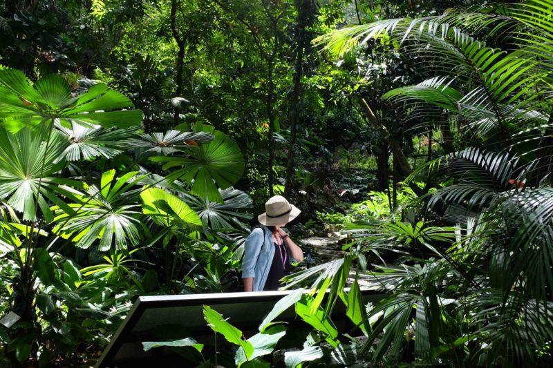 spice garden in Penang