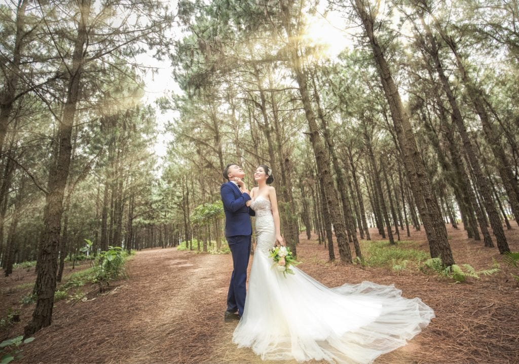 wedding couple amid forest trees