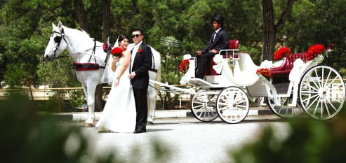 Wedding couple in front of carriage
