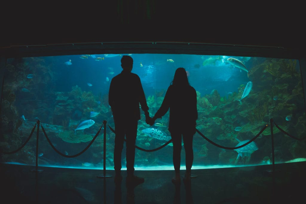 Wedding couple shoot in front of large fish tank in Aquaria KLCC