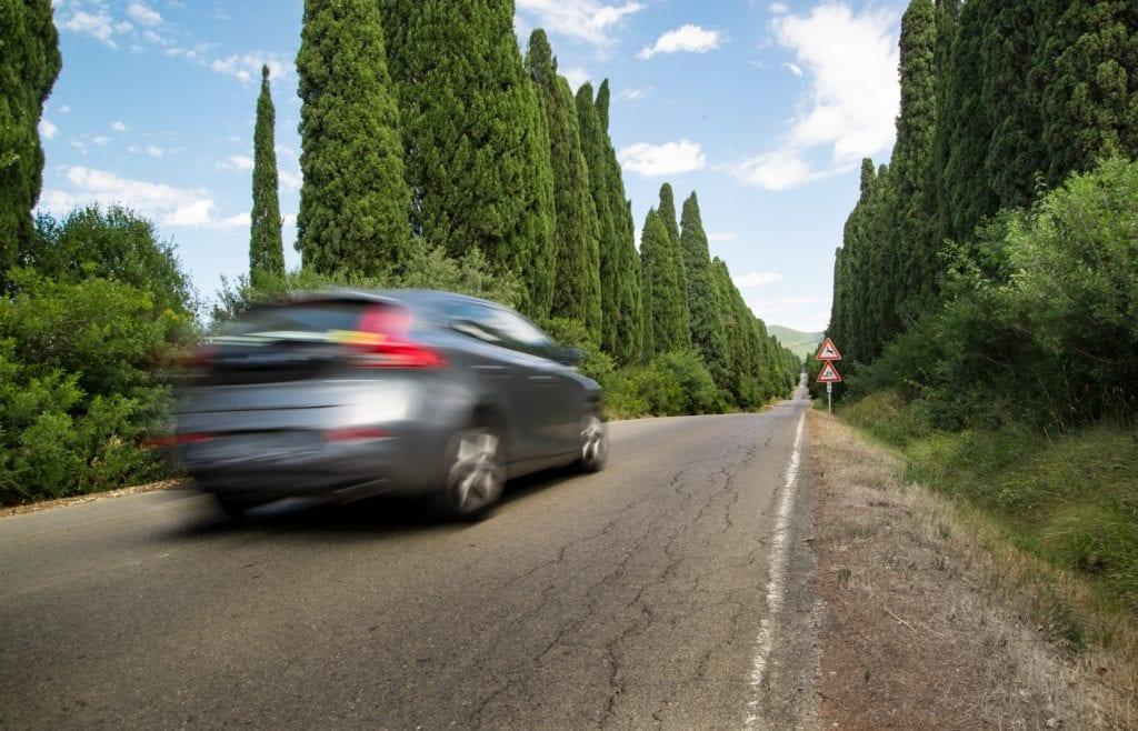 grey car in motion on road with tall trees on side
