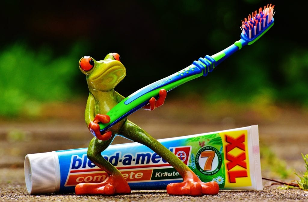 Little frog deco holding toothbrush and toothpaste at back