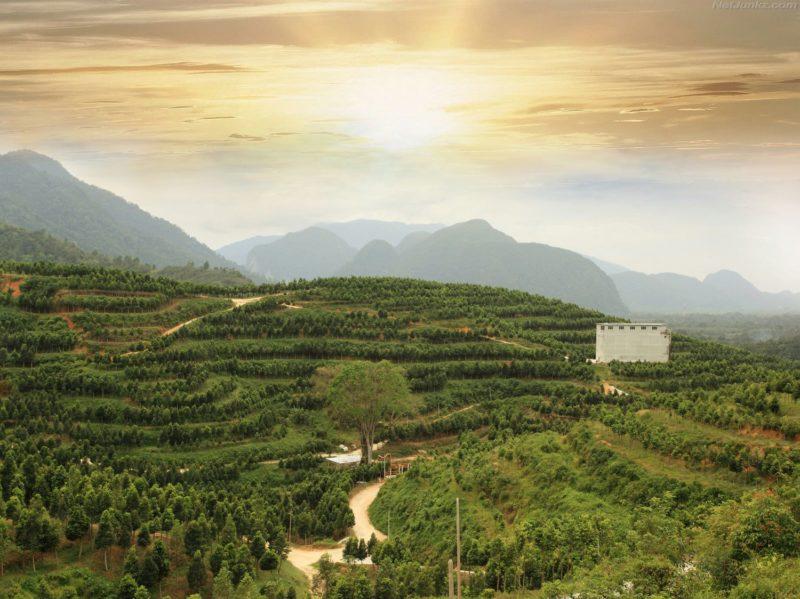 HOGA Gaharu Tea Valley Gopeng terrace facebook