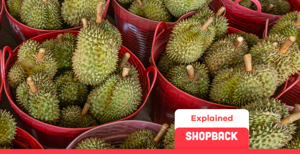 how to pick a good durian blog header