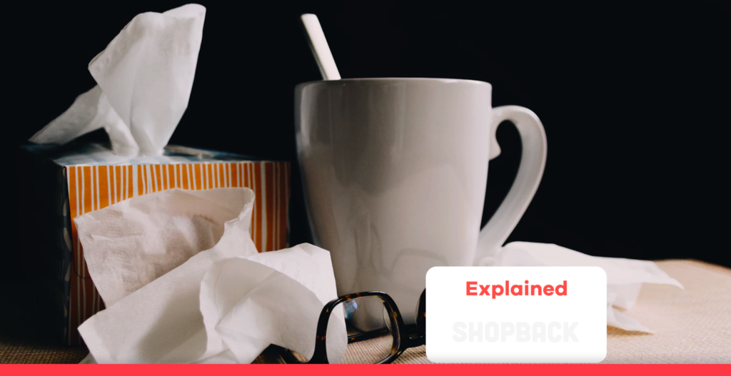 flu blog header