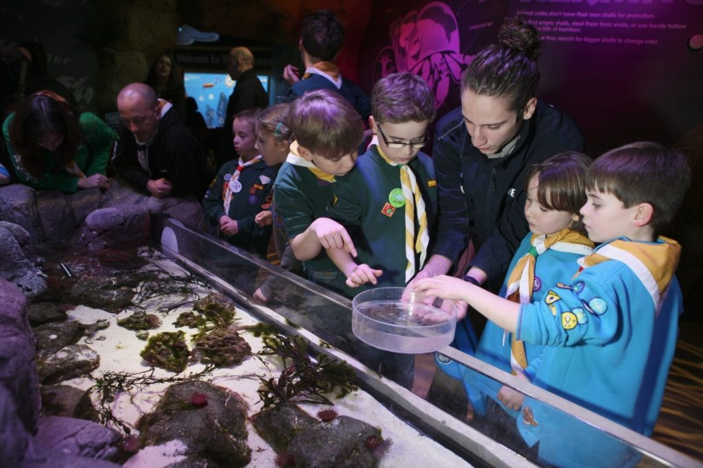 Kids with marine expert at Rcokpool examining sea creatures