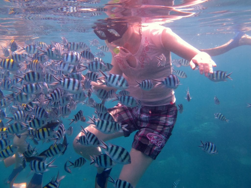 Lady underwater diving with striped fish all around her