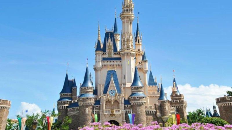 tokyo disneyland theme park