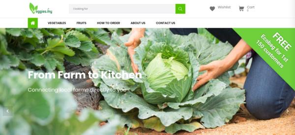 vegetable online grocer store