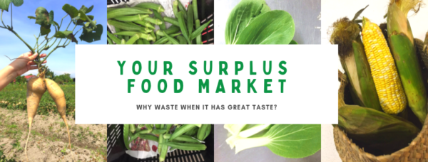organic farm online grocer