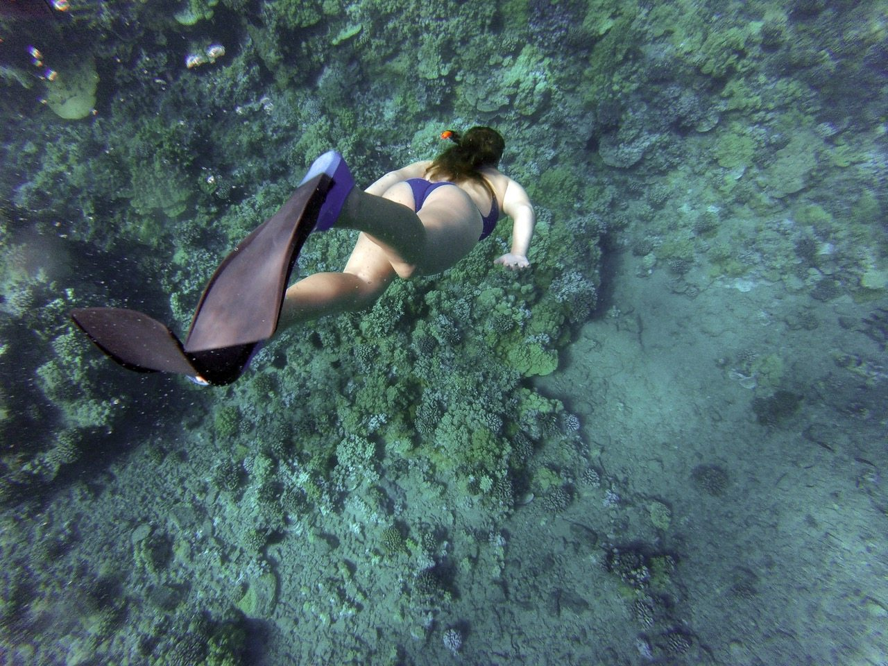 Booking.com Brings You To The Ultimate Snorkeling Resorts In Indonesia!