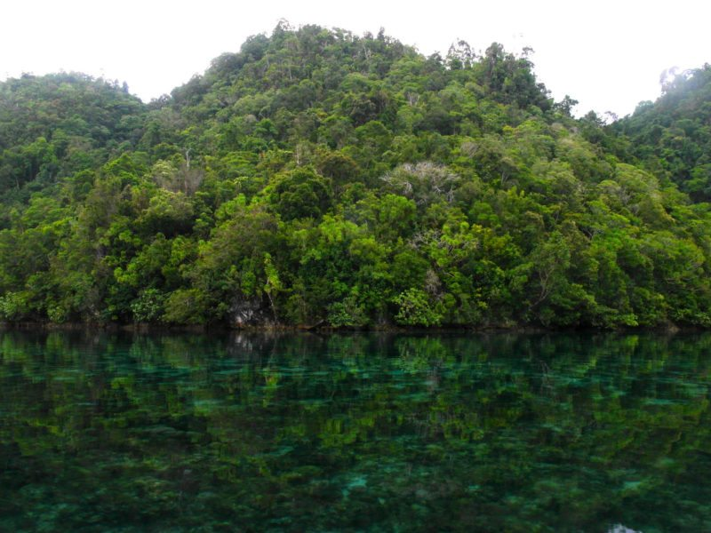 Sohoton green landscape of the Cove National Park, Siargao