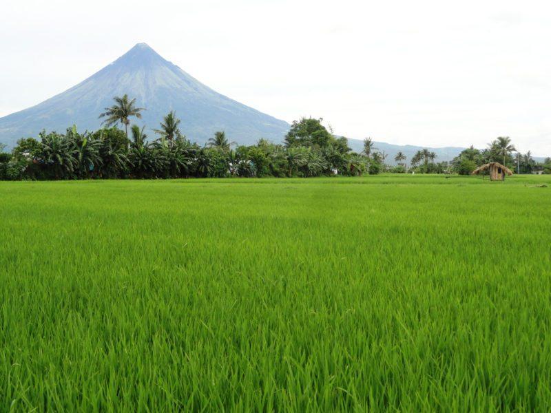 view of the Mayon Volcano, Legazpi, Bicol Region, Luzon, Philippines