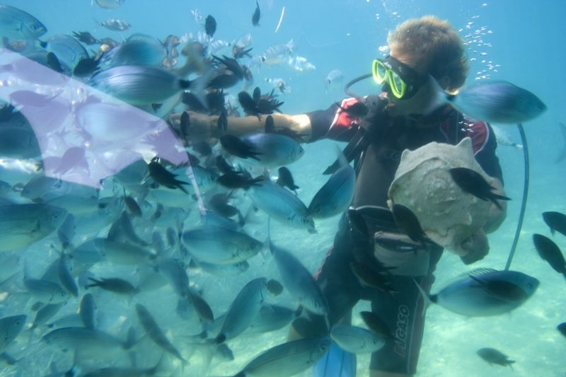 Diver with snorkels surrounded by fish