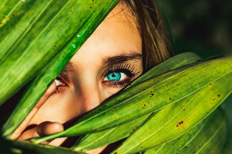 eyes and leaves