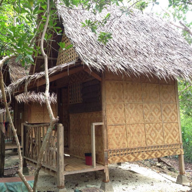 View of rustic themed room with thatched roof