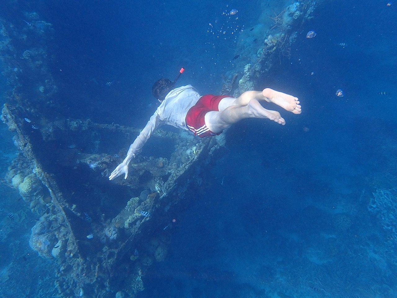 Skeleton Wreck Coron Palawan