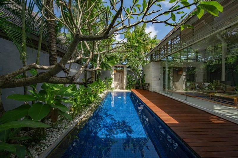 outdoor swimming pool in bali with tree