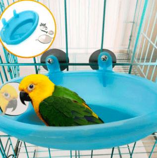 bird bath cartimar