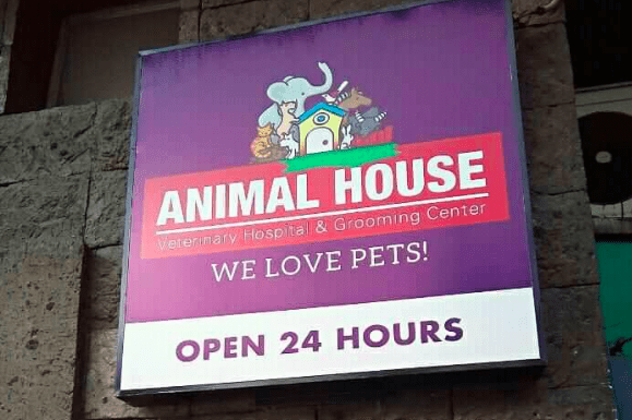 animal house makati