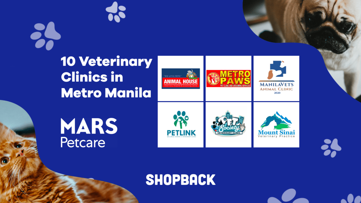 10 Veterinary Clinics That Are Open To Accommodate Your Pets
