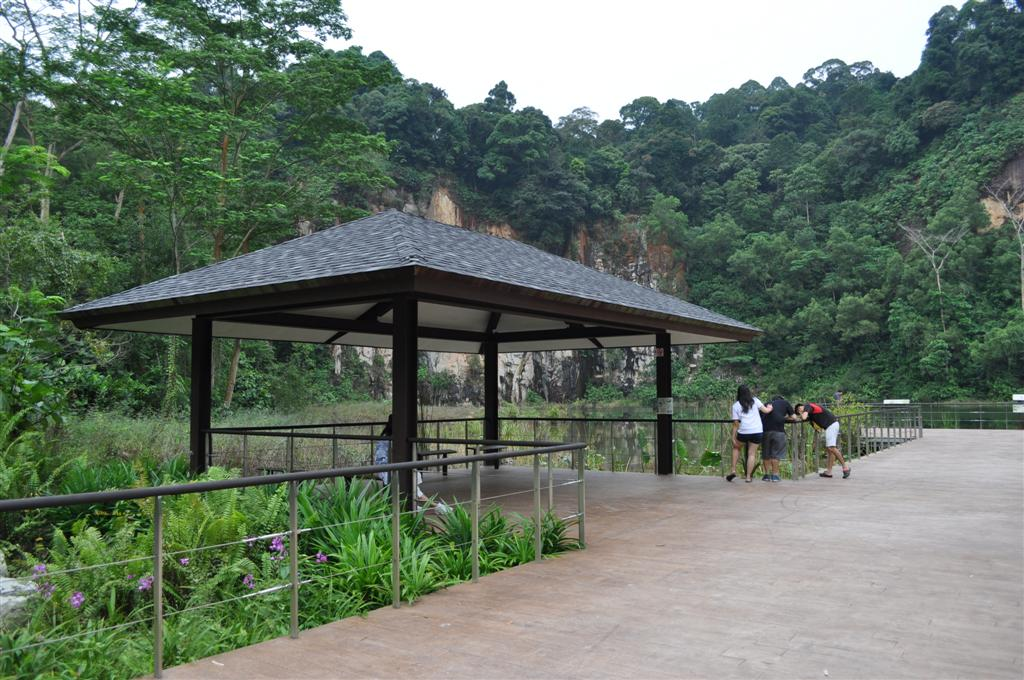 Dairy Farm / Bukit Timah Hill