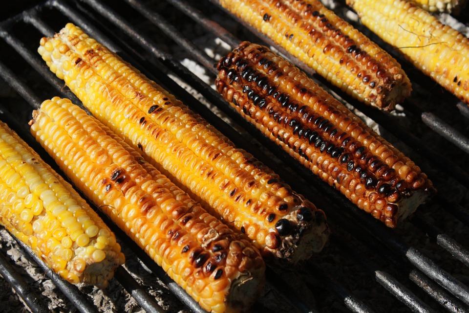 Grilled Corn on a Cob Korea