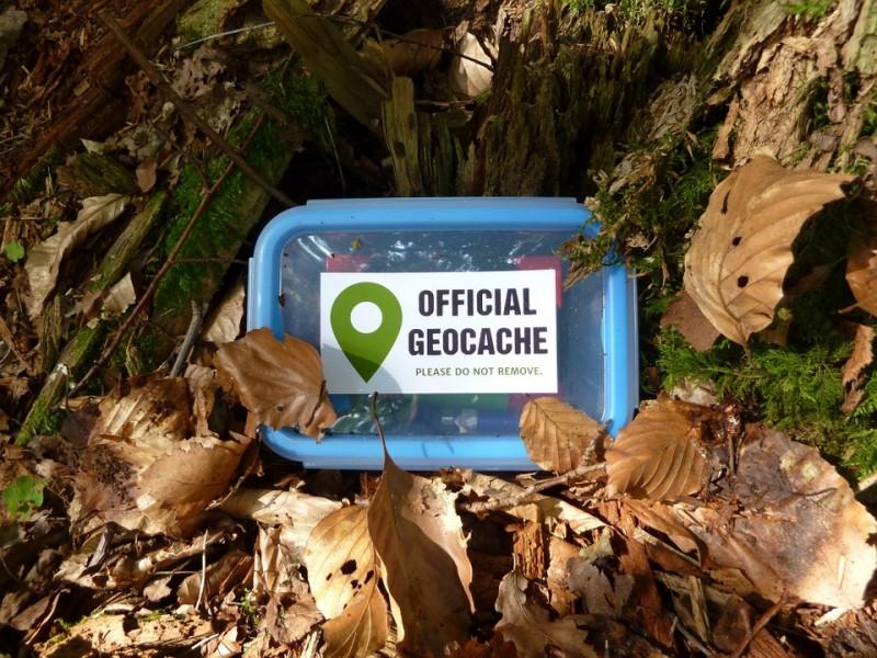 Geocaching Hidden Box