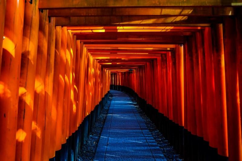 shopback nezu shrine tokyo