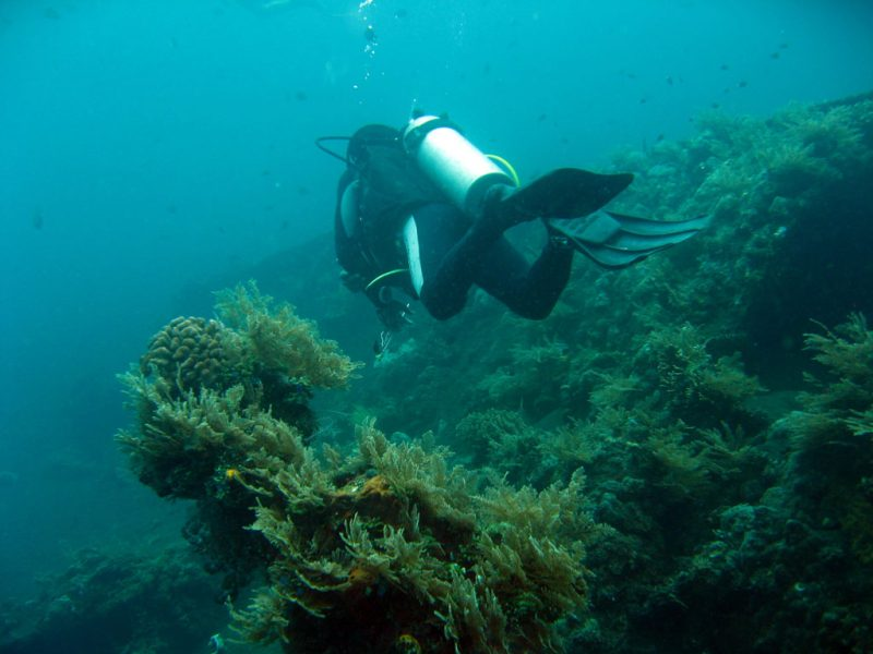 Bali points of interest include the underwater shipwreck.