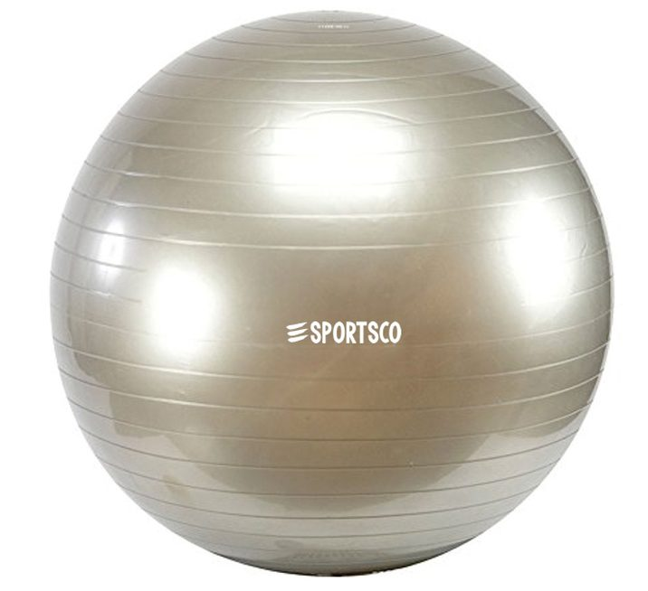 The Anti Burst Yoga Gym Ball is perfect for any exercise!