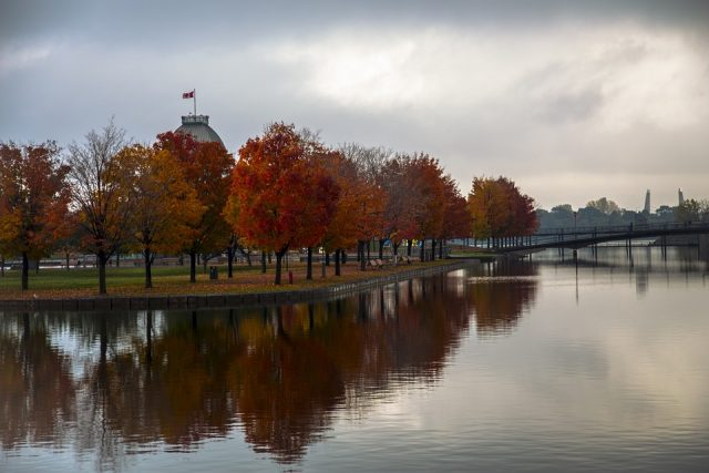 Old Port in Autumn