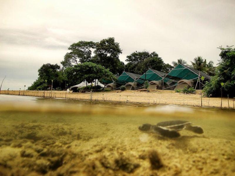 Walai Penyu Libaran Resort