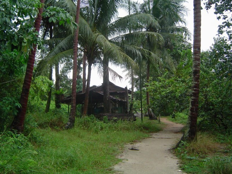 Enjoy a nature trip in Pulau Ubin.