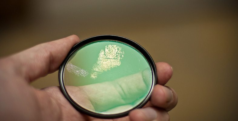 Forensic Science and Fingerprints Online Course