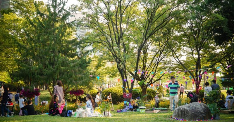 Families enjoying their time in Seoul's Parks
