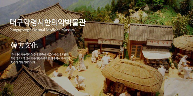 A banner for Daegu Yangnyeongsi Museum of Oriental Medicine