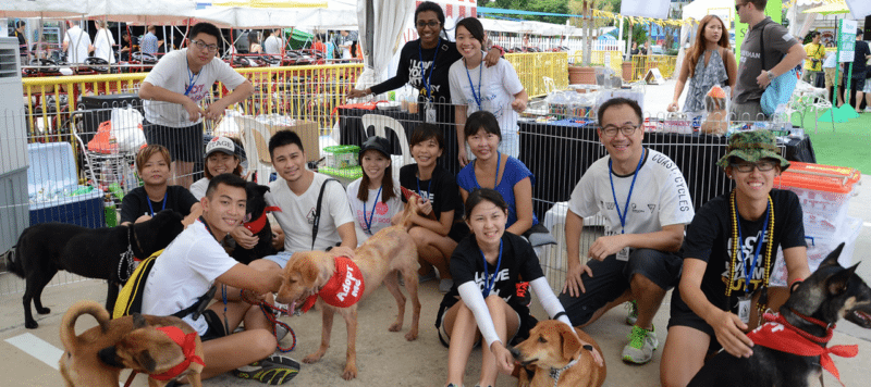 volunteerism in singapore