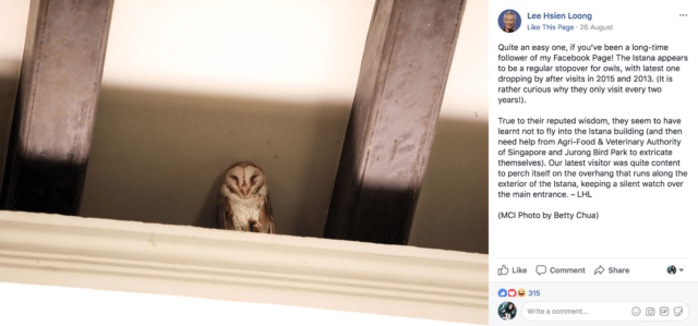 Lee Hsien Loong is visited by a barn owl
