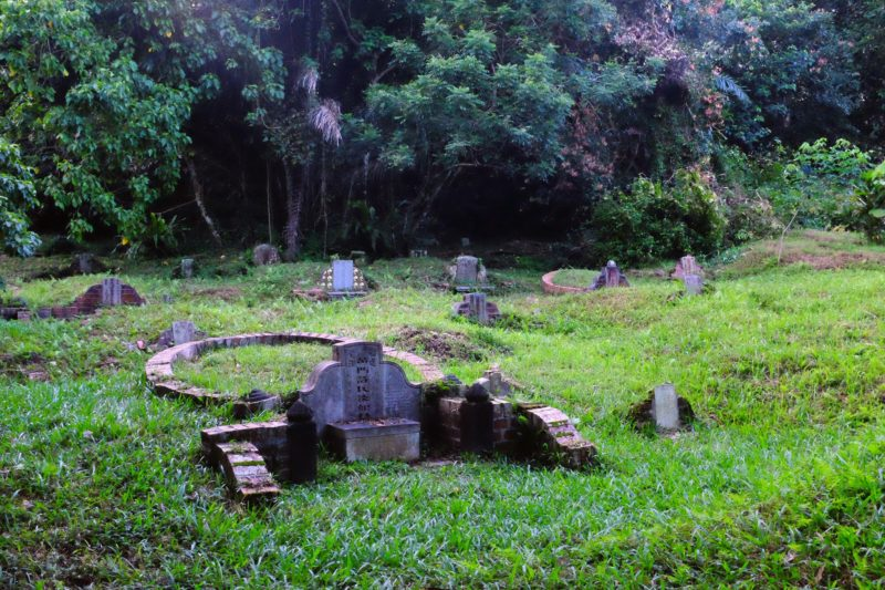 Bukit Brown cemetery in Singapore holds a long history