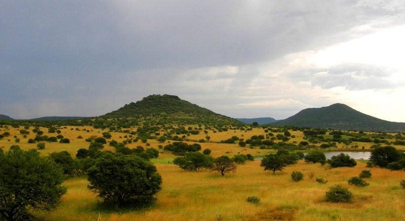 savanna in south africa that loooks like wakanda