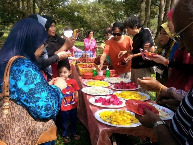 Malacca, new things to do, travel guide, fruit farm