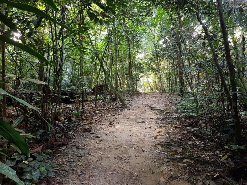 Singapore trekking