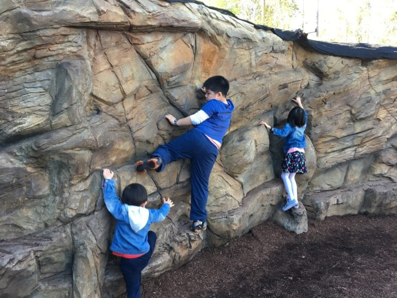 3 kids rock climbing