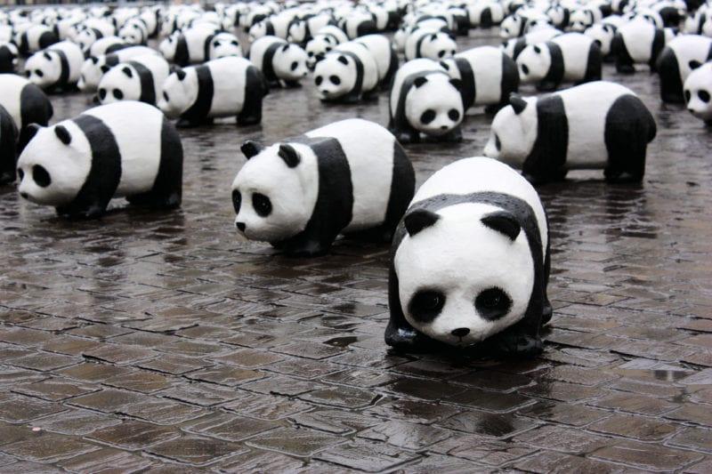 WWF pandas deco standing on brown street