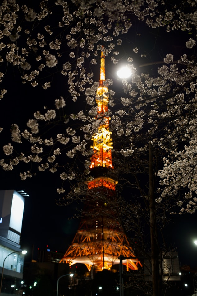 Tokyo tower at night with street lights and cherry blossoms