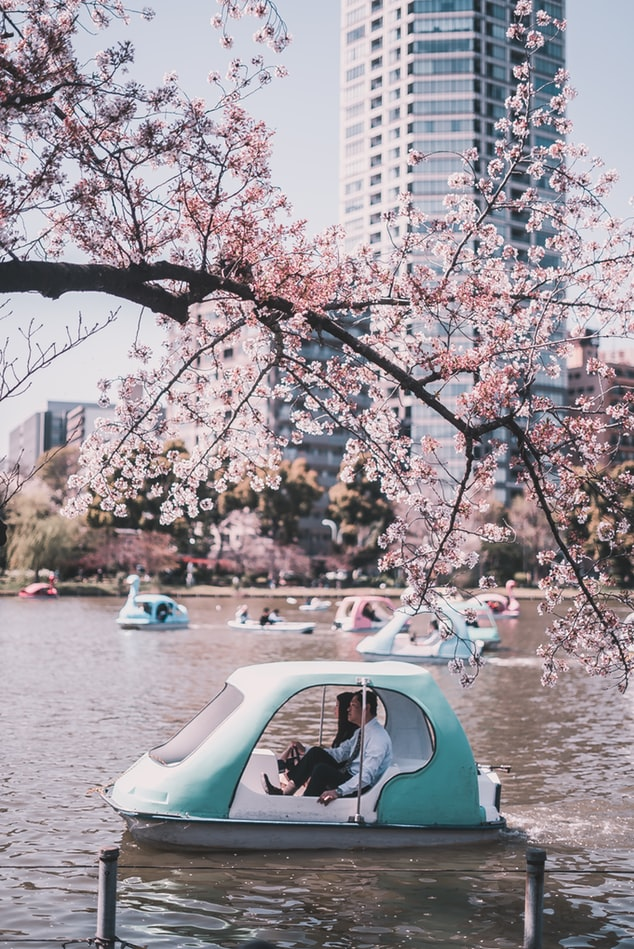 motorised boats at Ueno park in Tokyo Japan
