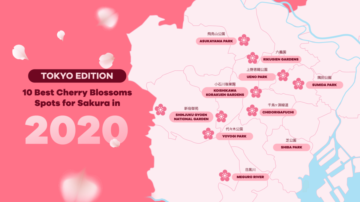 Ultimate Cherry Blossom Guide 2020 along the Tokyo Subway Line and more!