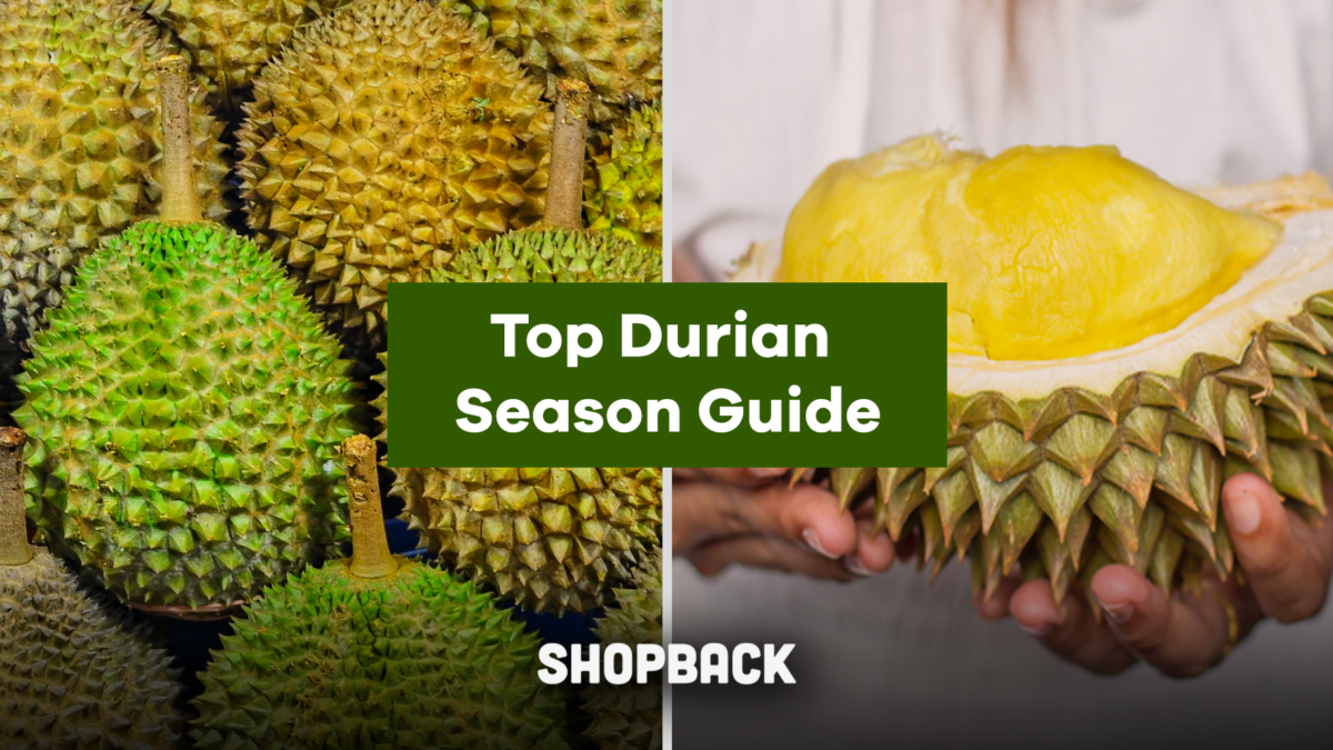 Your Durian Season Guide: Where and How To Get Your Durians!