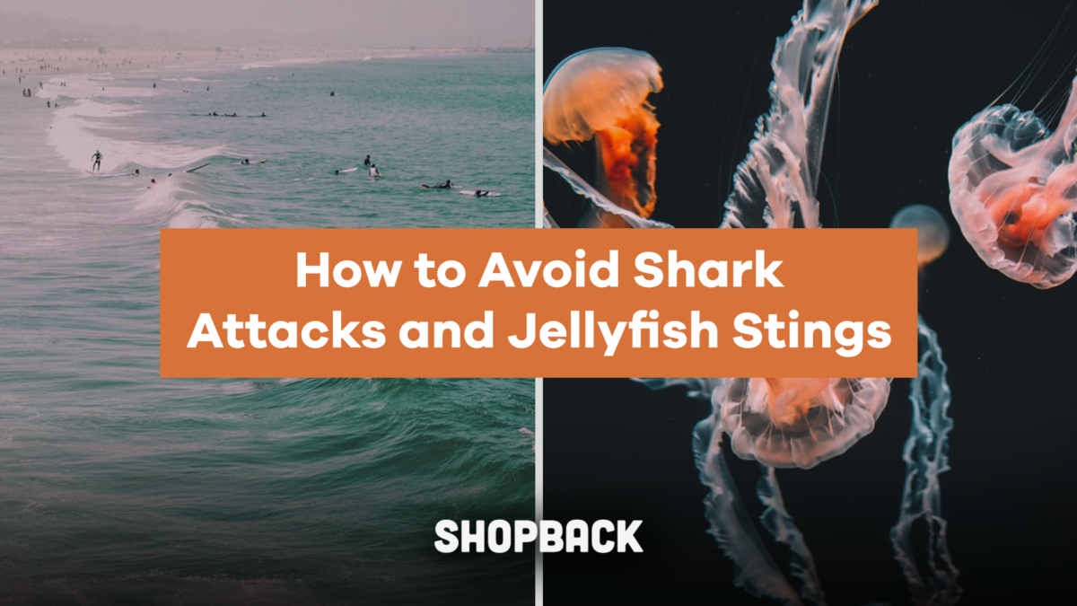 Beach Travel Safety Tips: How To Avoid Shark Attacks, Jellyfish Stings And More!